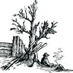 Wilma Produits Naturel